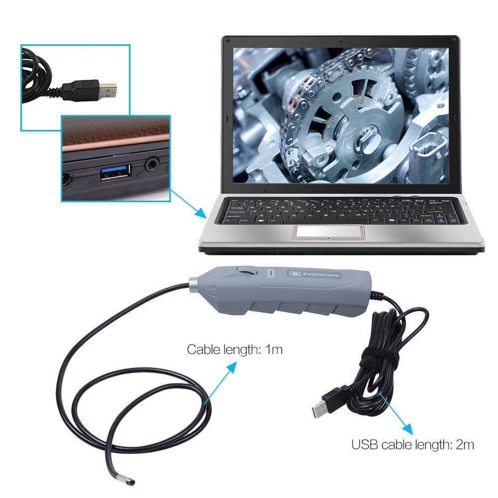 dbpower hd 5 5mm usb endoskop ip67 im test endoskop. Black Bedroom Furniture Sets. Home Design Ideas